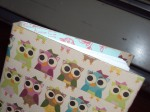 Owl Drawing book
