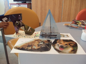 Sailing with dogs